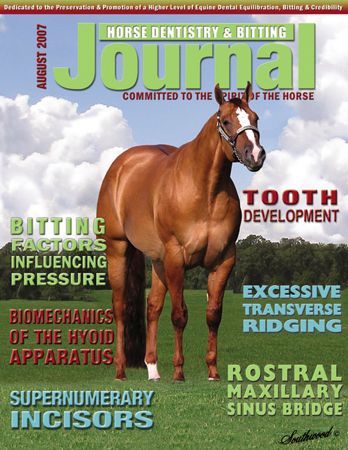 Journal of Equine Dentistry - 2007 August