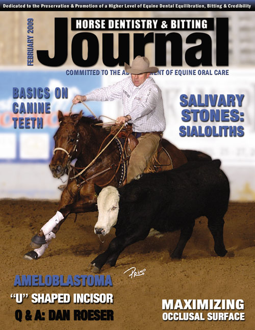 Journal of Equine Dentistry - 2009 February