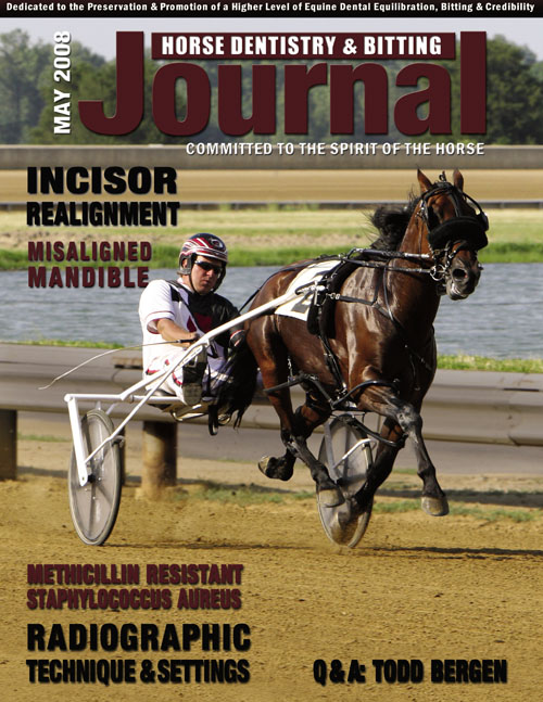 Journal of Equine Dentistry - 2008 May