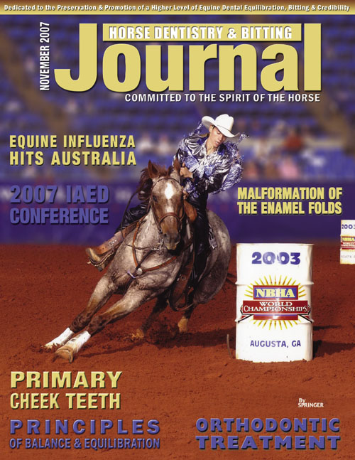 Journal of Equine Dentistry - 2007 November